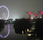 singapura wahyualamcom - garden by the bay