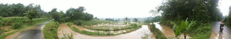Desa Klumpit Soko Tuban