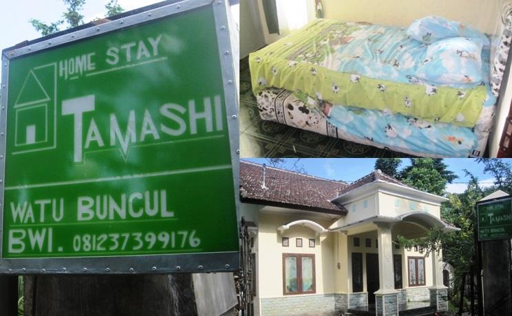 Homestay Banyuwangi Murah Watu Buncul - Tamashi